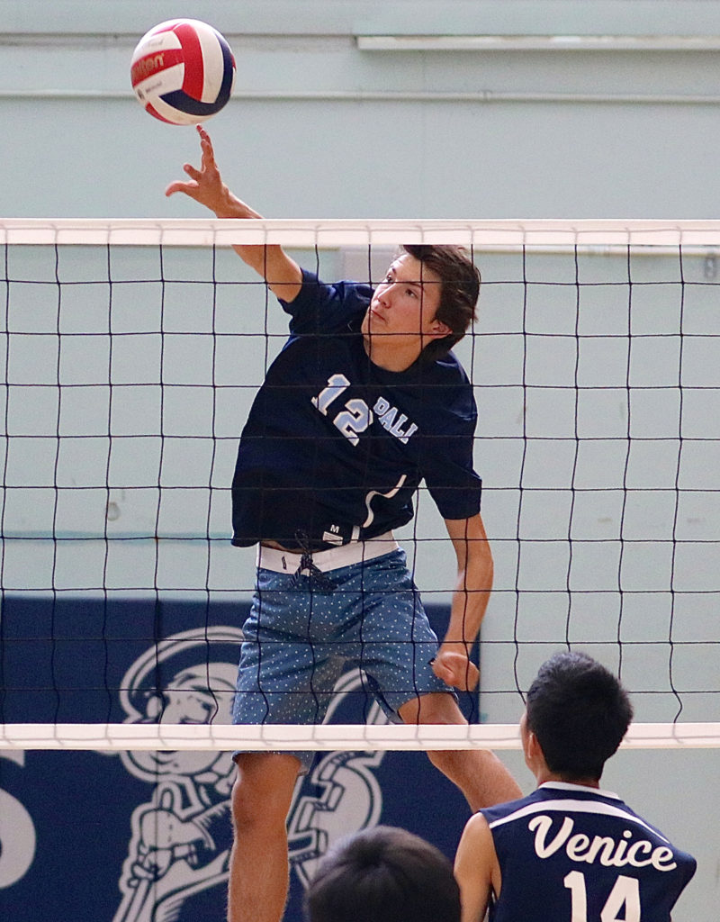 Junior middle blocker Flaviano goes on the attack in Monday's match at Venice. Photo: Steve Galluzzo